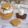 Gimme S'more Fondant Tutorial!