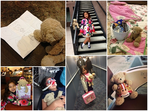 Beary collage